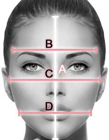 Morphologie visage